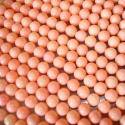 Looduslik roosa korall-helmes/6mm